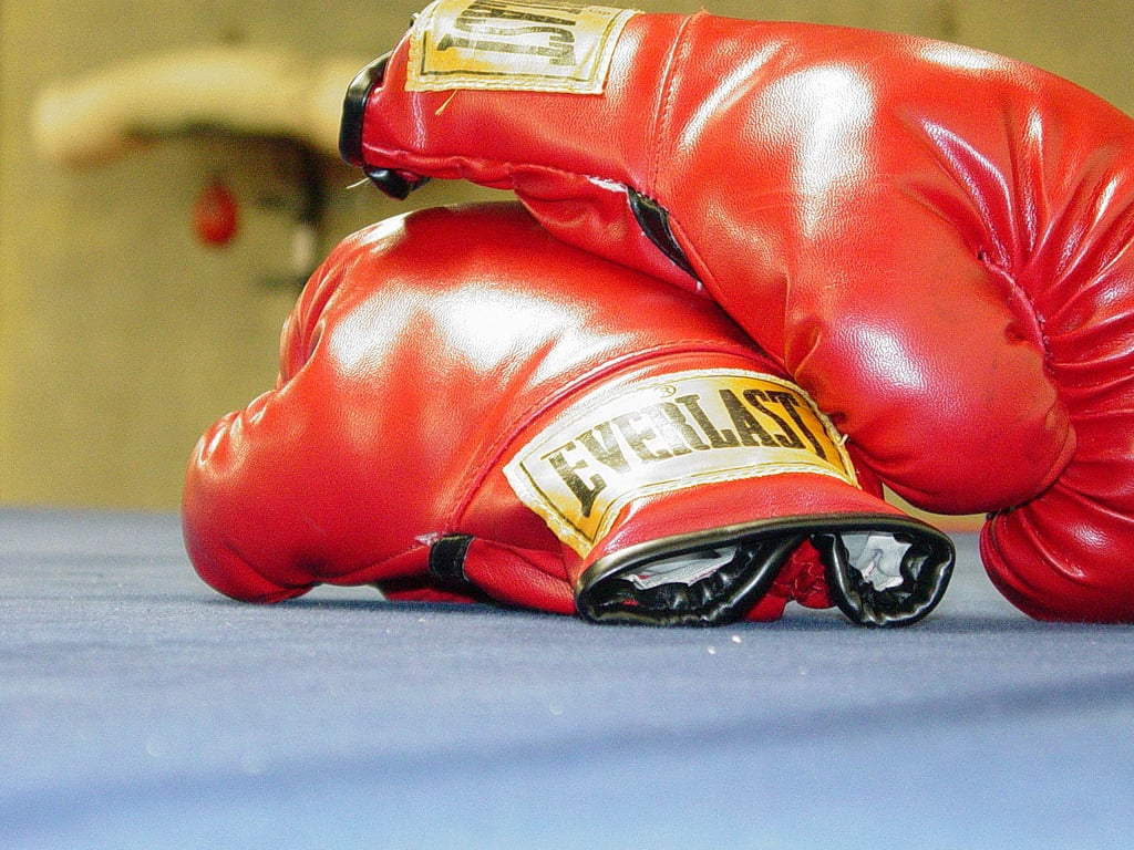 Best Boxing Gloves (Updated 2021)