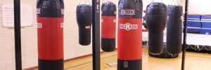 The Best Heavy Bag Stands 2019