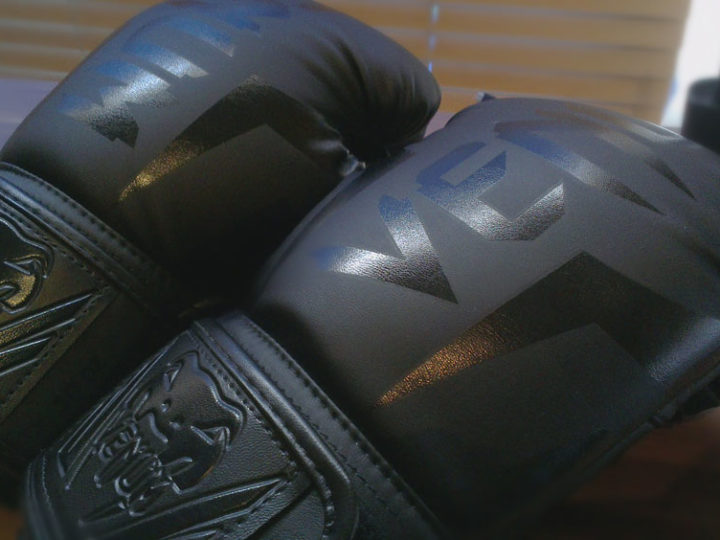 Venum Gloves Review 2021
