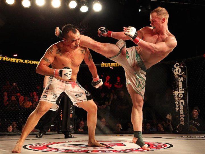 Best MMA Gloves (Updated 2021)