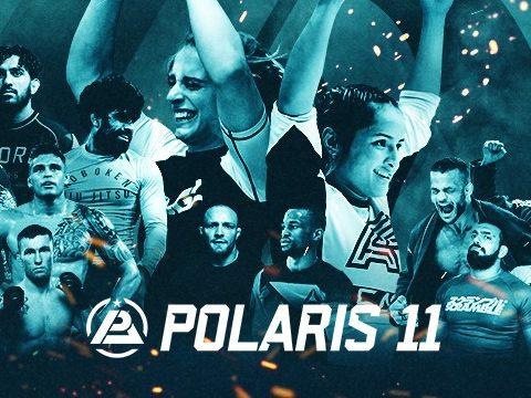 Polaris 11 Preview