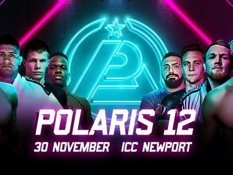 Polaris 12 Preview